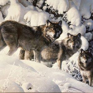 Carl Brenders-Long Distance Hunters