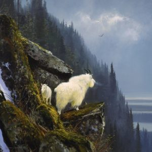 Michael Coleman-Rugged Heights Mountain Goats