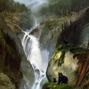 Michael Coleman-Thunder Valley Black Bear Family
