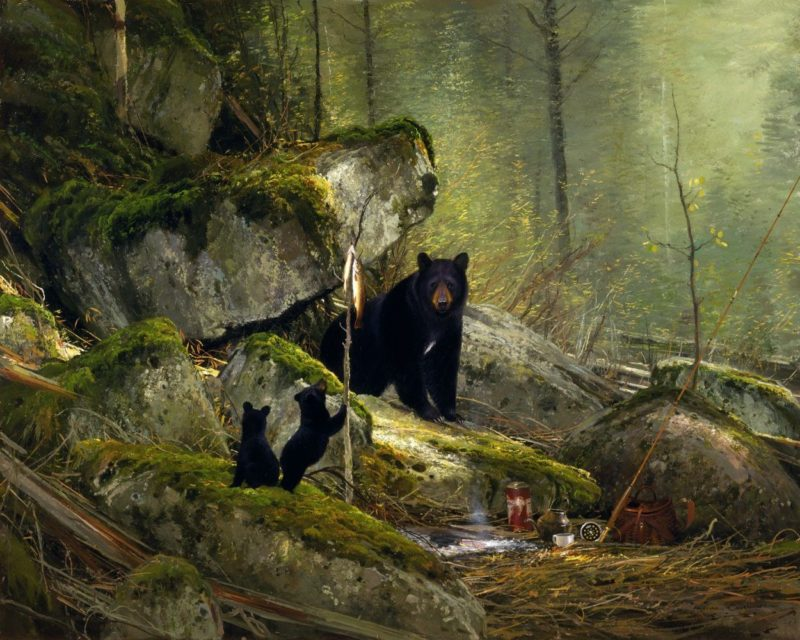 Michael Coleman-Visitors on the Sun River Black Bears