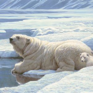 Robert Bateman-Artic Family