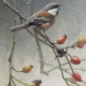 Robert Bateman-Chickadee and Rosehips