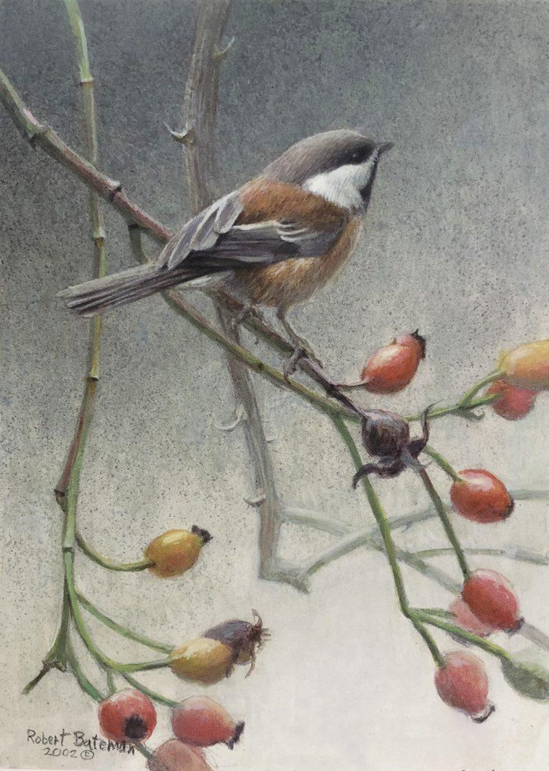 Robert Bateman-Chickadee and Rosehips
