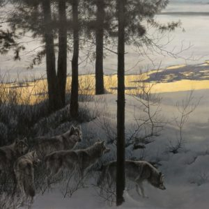 Robert Bateman-Edge of Night Timber Wolves