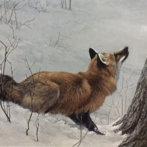 Robert Bateman-Game Over Fox and Maple