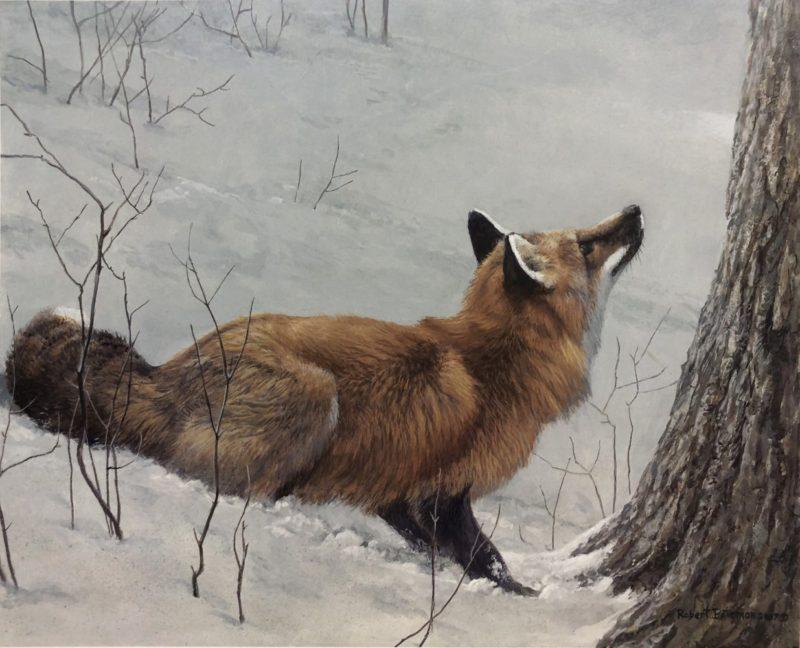 Robert Bateman-Game Over Fox and Maple