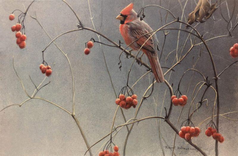 Robert Bateman-Highbush Cranberries