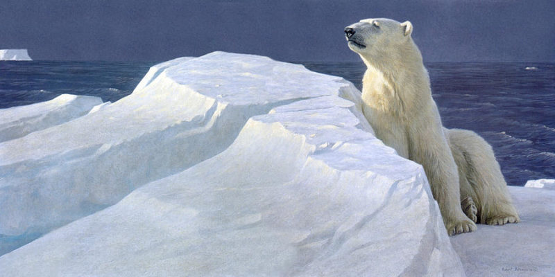 Robert Bateman-Long Light Polar Bear
