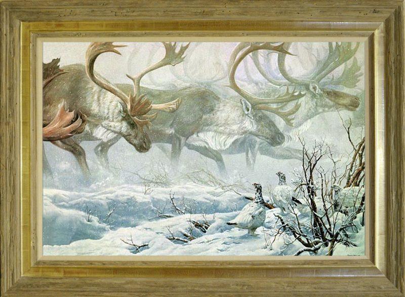 John Seerey-Lester - Arctic Procession