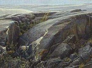 Robert Bateman-arctic landscape