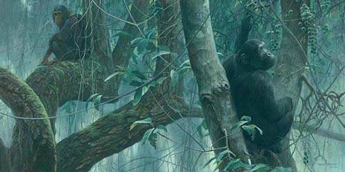 Robert Bateman-at mahale chimpanzees