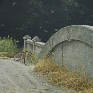 Robert Bateman-at the bridge cliff swallows