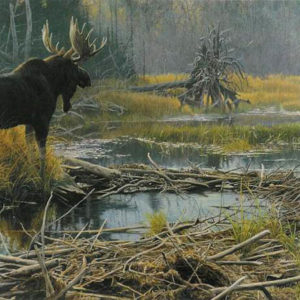 Robert Bateman-autumn overture moose