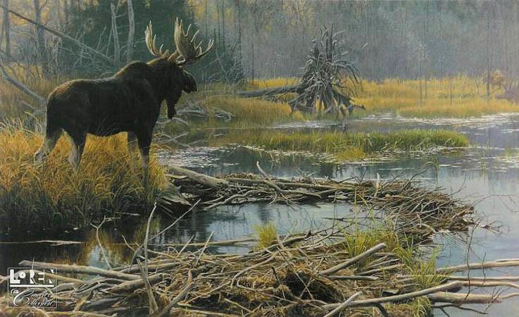Robert Bateman-autumn overture moose