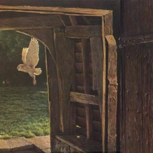 Robert Bateman-barn owl in the churchyard