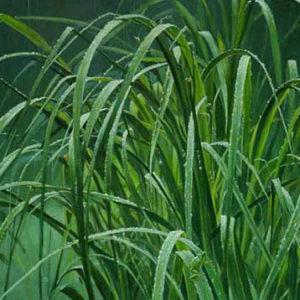 Robert Bateman-beach grass and tree frog