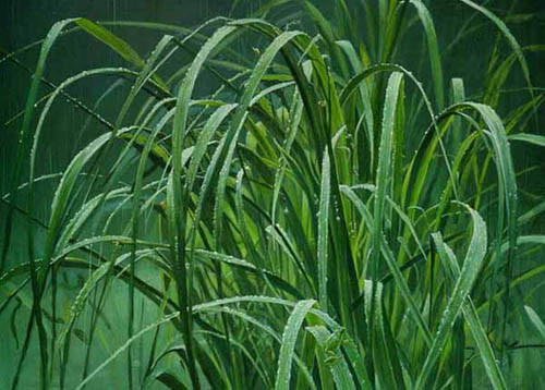 Robert Bateman-beach grass and tree frog