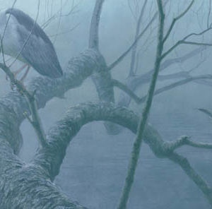 Robert Bateman-black crowned night heron pair