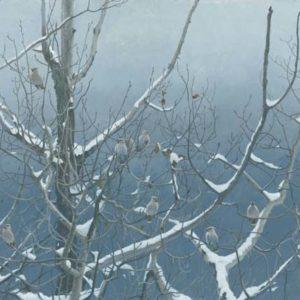 Robert Bateman-bohemian waxwings and poplar
