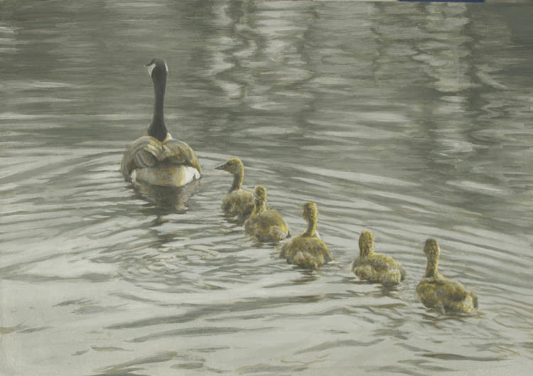 Robert Bateman-canada goose and goslings