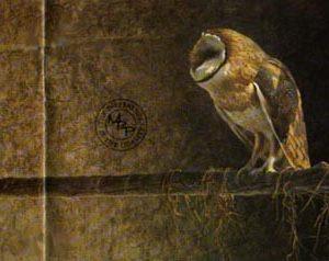Robert Bateman-catching the light barn owl