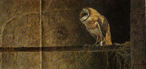 Robert Bateman-catching the light barn owl