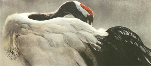 Robert Bateman-ceremonial pose red crown crane