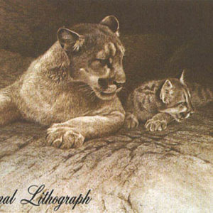 Robert Bateman-cougar and kit