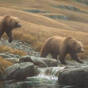 Robert Bateman-Courting Grizzlies