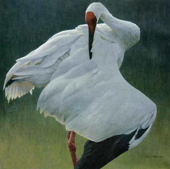 Robert Bateman-defensive stand giclee canvas