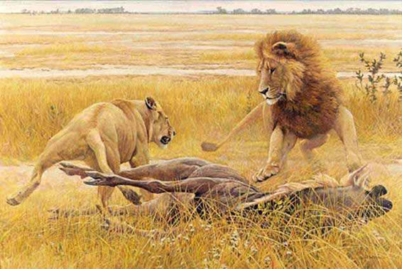 Robert Bateman-dispute over prey