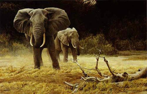 Robert Bateman-elephant cow and calf