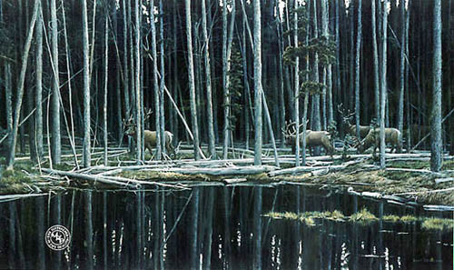 Robert Bateman-elk at yellowstone