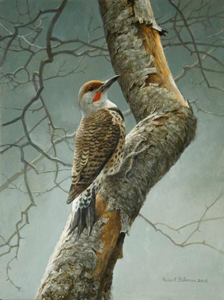 Robert Bateman-flicker on apple tree