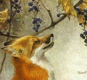 Robert Bateman-fox and grapes