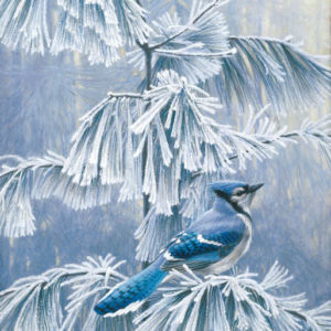 Robert Bateman-frosty morning blue jay