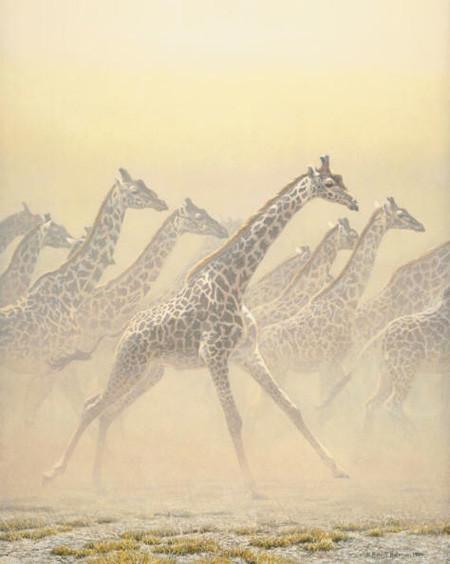 Robert Bateman-galloping herd girrafes