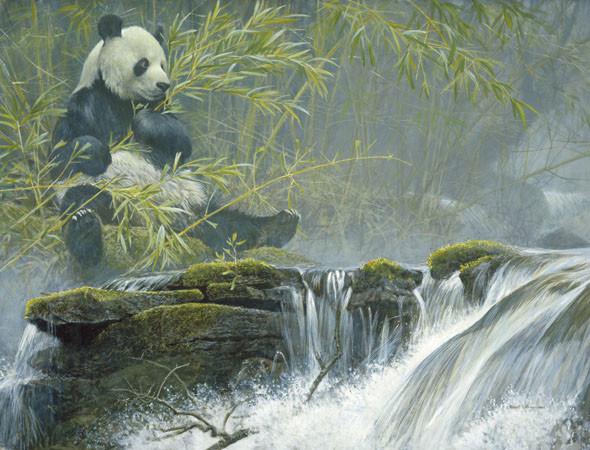 Robert Bateman-giant panda