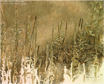 Robert Bateman-goldfinch with mullein