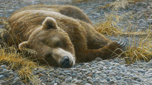 Robert Bateman-grizzly at rest