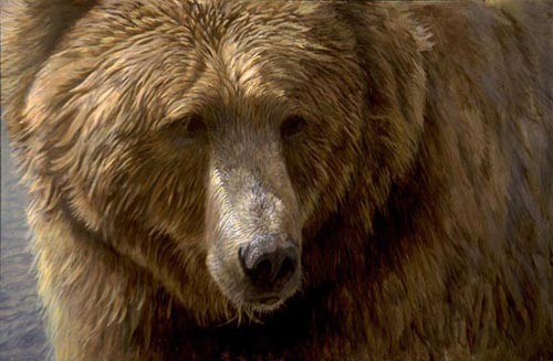 Robert Bateman-grizzly head