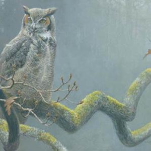 Robert Bateman-in the oak great horned owl