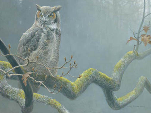 Robert Bateman-in the oak great horned owl