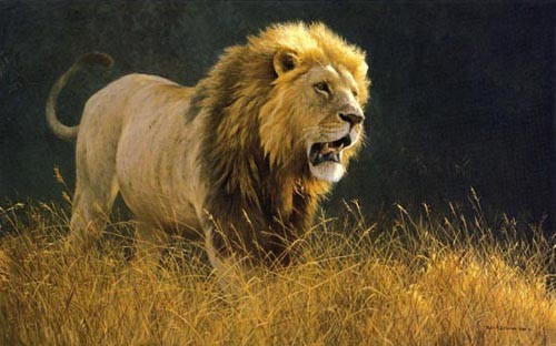 Robert Bateman-into the light lion