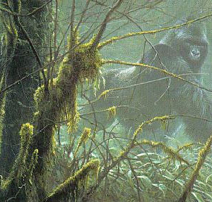 Robert Bateman-intrusion mountain gorilla
