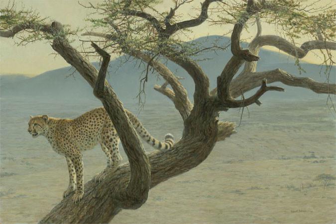 Robert Bateman-lewa cheetah