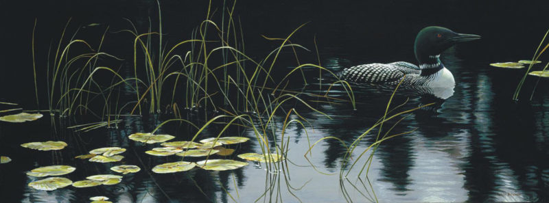 Robert Bateman-lilypads and loon