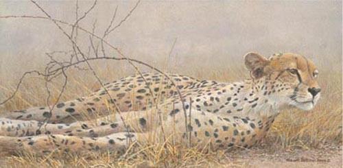 Robert Bateman-londolosi cheetah