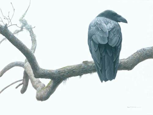 Robert Bateman-lone raven
