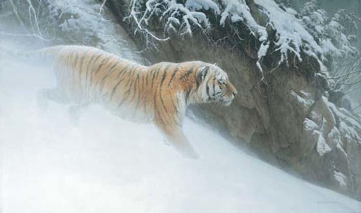 Robert Bateman-momentum siberian tiger